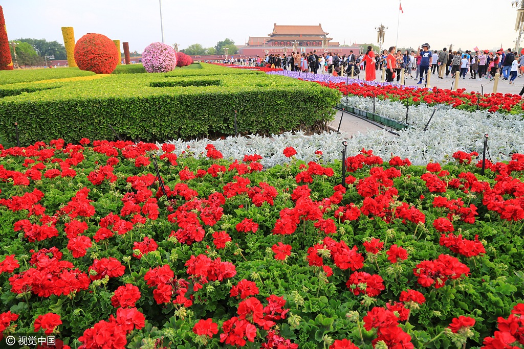 天安门广场花团锦簇 迎五一国际劳动节