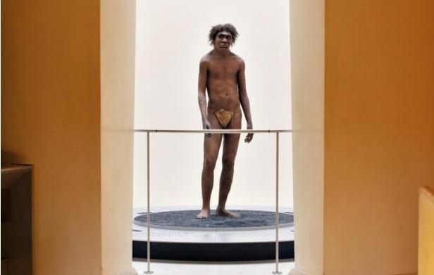 史前人类DNA出土 解答人类历史露新曙光
