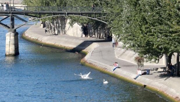 多国科学家:气候变迁 城市面临洪水及高温风险