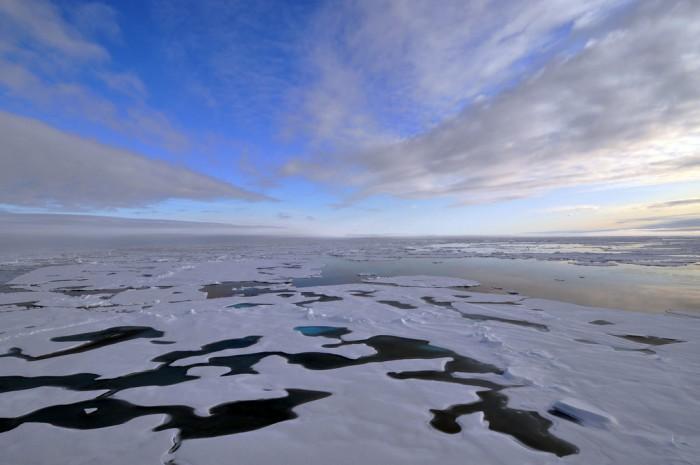 北极变暖速度为其他地区两倍,有记录以来最暖