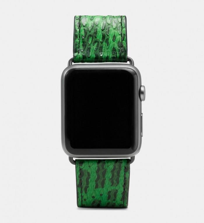 COACH发布Apple Watch春季款装饰皮革表带