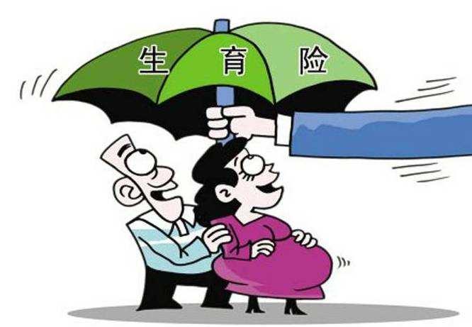 人社部:生育保险基金累计结余可支付15个月