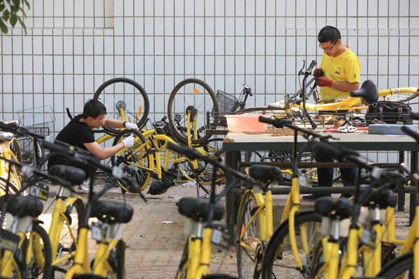 天津小黄车维修点 近千辆共享单车等待维修
