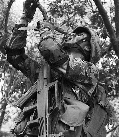 特战学员荒野求生:藤条中取水喝 钻木取火(图)