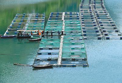 湖南湖北多地开展行动 爆破拆除非法捕鱼设施