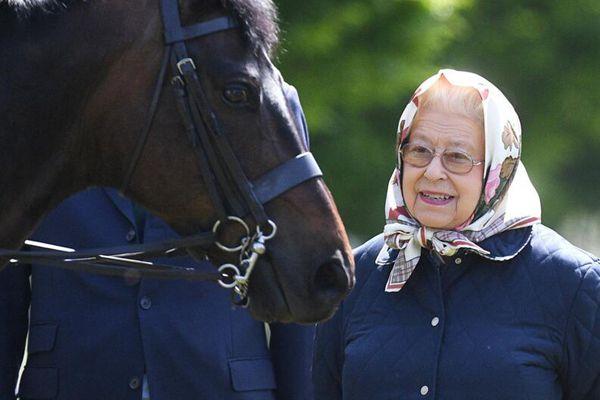 英国女王出席温莎马展 村姑造型萌萌哒