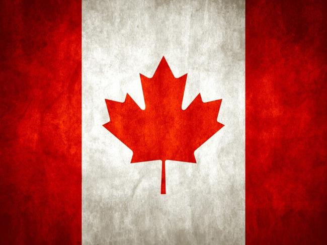 加拿大移民新政 放宽子女年龄上限
