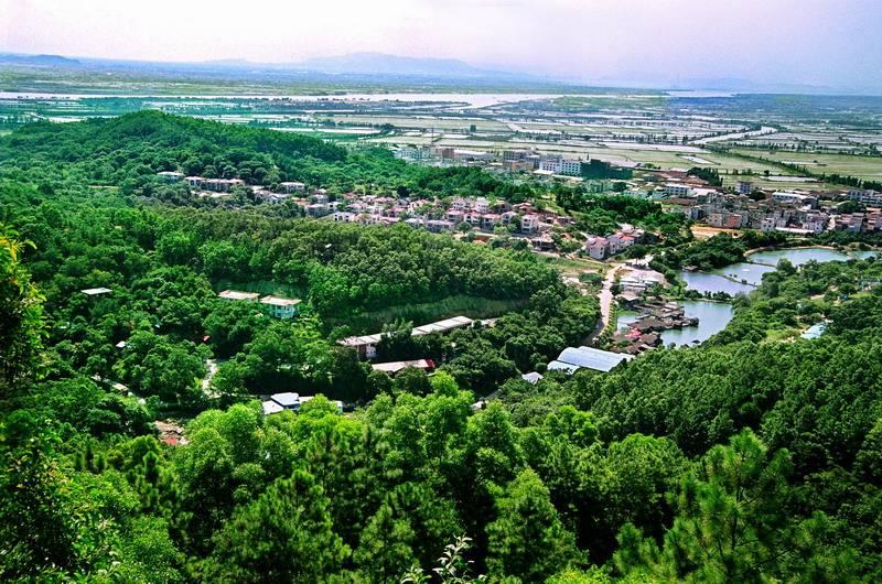 中山如何创建特色小镇?政协委员这么说
