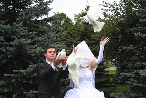 """婚礼照片中的那些""""意外"""""""
