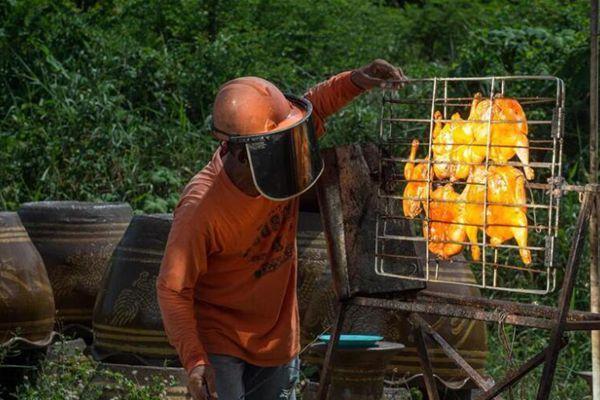 高手在民间!泰国大叔用太阳能烤鸡20年