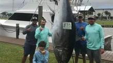 14岁少年钓到760斤蓝鳍金枪鱼