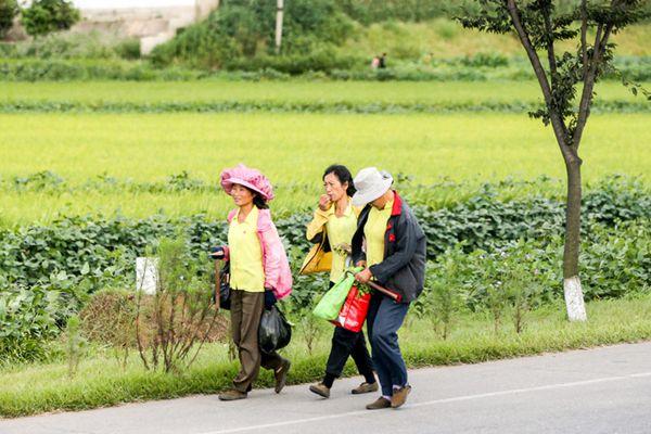 摄影师探访朝鲜农村 农民衣着朴素步履匆匆