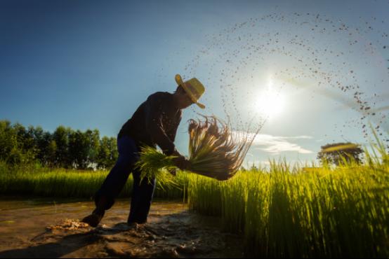 可溯金融:互联网金融助推农村经济发展