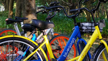 自行车也是一种时尚选择
