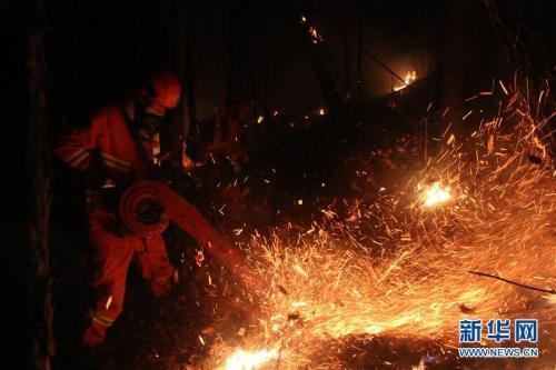 呼伦贝尔森林火灾投入千人扑救 起火原因正核查