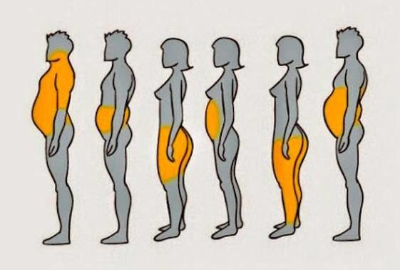"""局部肥胖全靠练?今天讲讲由内而外""""减肥经"""""""