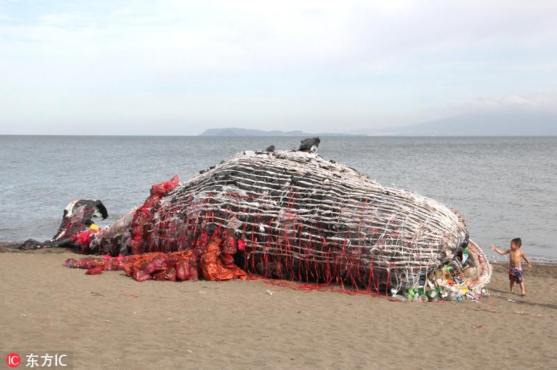菲环保人士塑料垃圾打造巨型死鲸雕塑 呼吁关注海洋污染