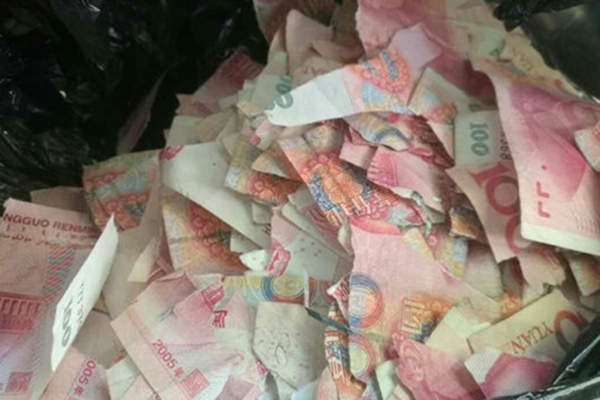 青岛一5岁熊孩子撕钱玩 5万现金成碎片