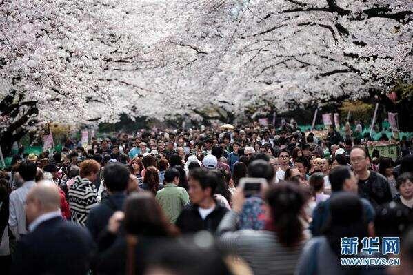 日本去年向中国人发放签证数再创新高 增幅高达12%