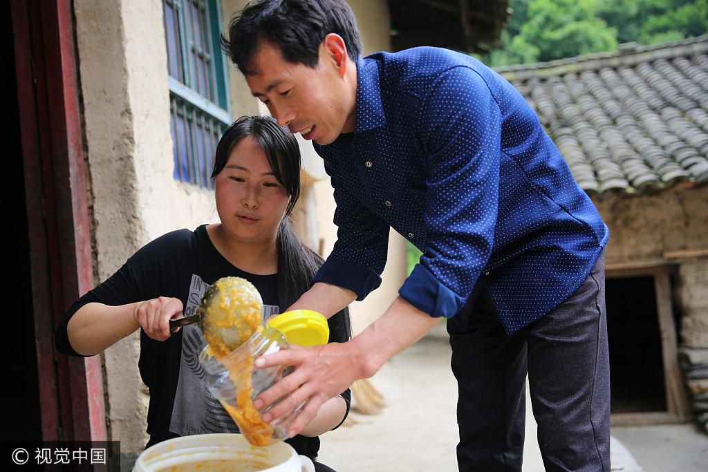 陕西汉中:秦岭腹地小夫妻住百年老宅养土蜂 目标是养500箱