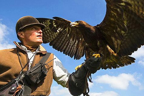 帅气!英男子骑马驰骋高原驯鹰狩猎