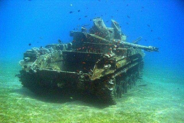 土耳其将坦克沉入海底吸引潜水爱好者