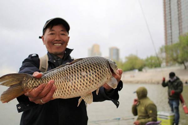 松花江水位开始回升 市民连钓4尾大鲤鱼