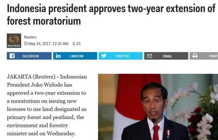 防范山火 印尼再次延长暂停开发森林禁令