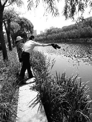 北京亮马河北岸放生南岸捞 有人往河里倒十几箱小龙虾