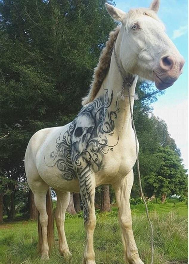 新西兰艺术家为白马绘制酷炫骷颅头假纹身