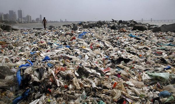 孟买海滩5000吨垃圾被清理 金色沙滩重见天日