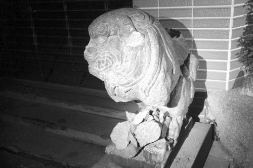 图片说明:被破坏后的石狛犬。