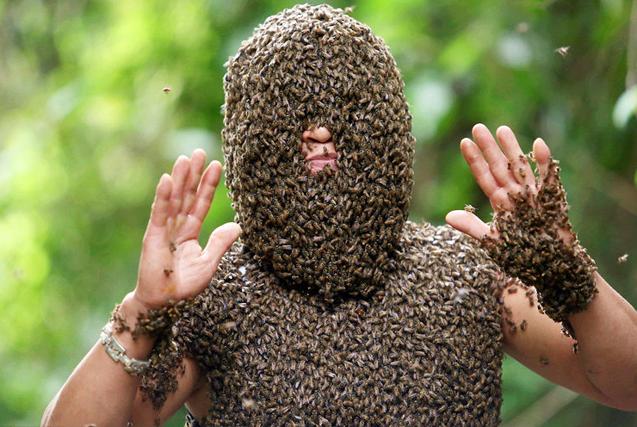 越南养蜂人神技能 吸引成千野生蜂爬全身