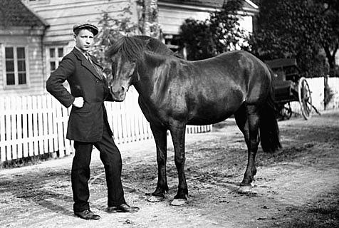 老照片记录20世纪早期挪威人质朴生活