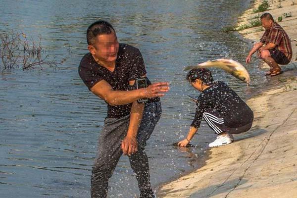 公园池塘缺氧养鱼户发愁 市民徒手捞鱼