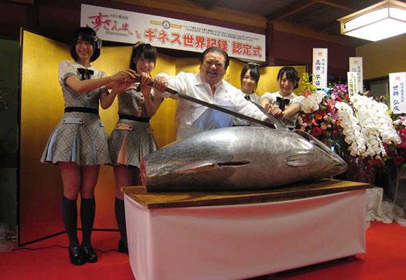 这条金枪鱼卖950万天价 创世界纪录