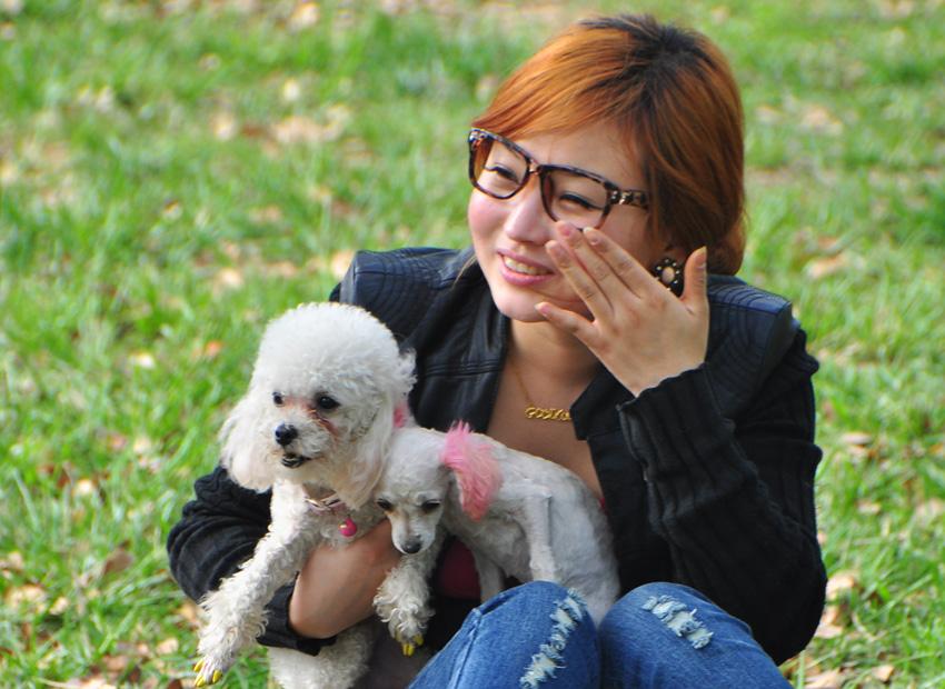 女白领接触泰迪犬从不洗手 眼睛取出2厘米活虫