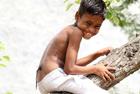 男童长尾巴被当猴神朝拜
