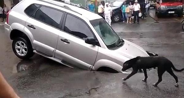 """巴西某路面突然塌陷 小车瞬间被巨坑""""吞没"""""""