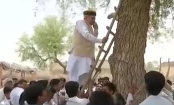 印度手机信号有多差?财政部长爬树打电话
