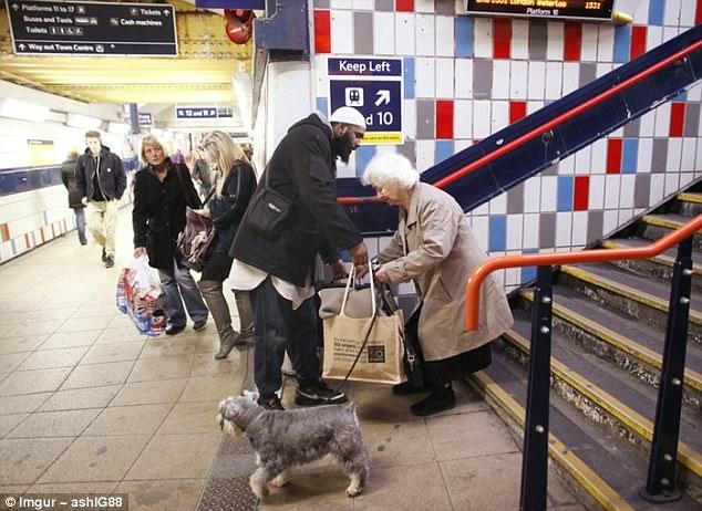 暖心!世界各地人们的同情心图片