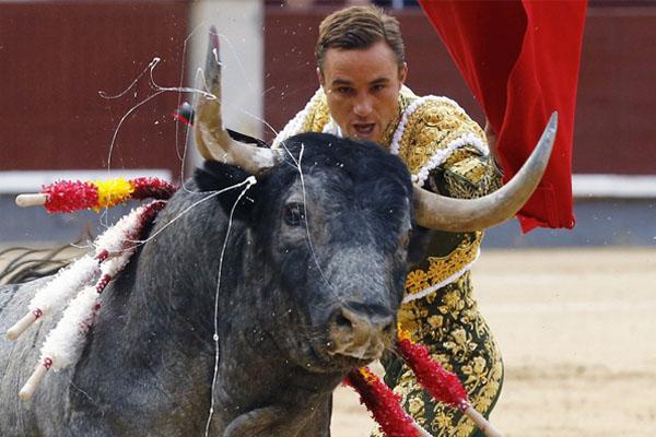 西班牙圣伊西德罗斗牛节 斗牛士遇上蛮力公牛人仰马翻