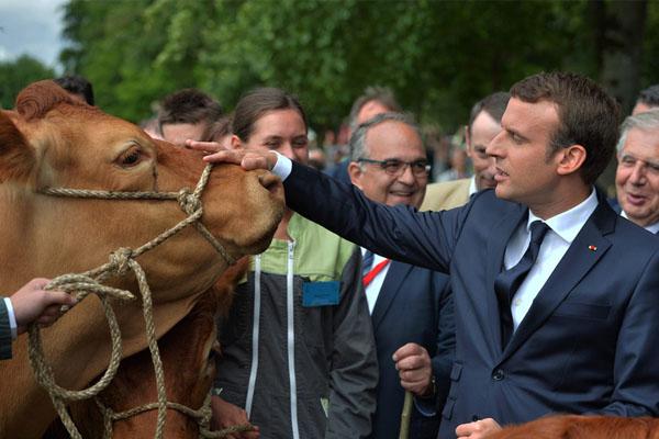 法国总统马克龙赴地方访问人气爆棚