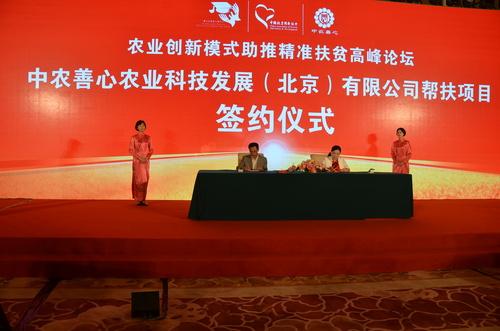 机构聚京吹响扶贫集结号 社会组织将成一线中坚力量