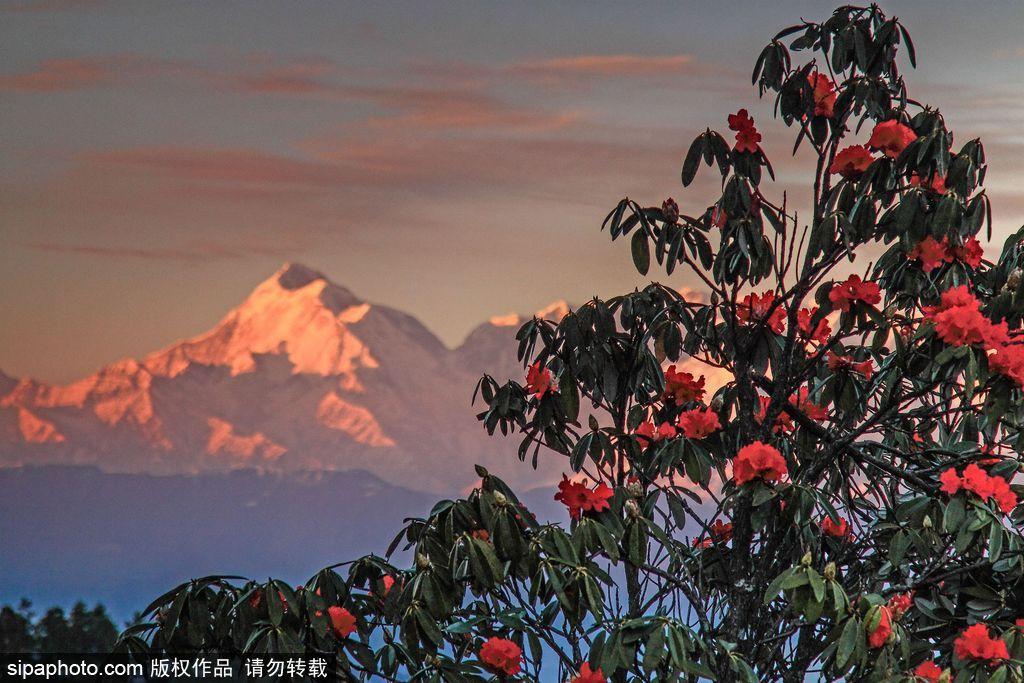 不一样的印度 蕴藏了整个世界的美景