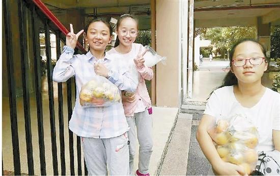 """小学生认领校园""""责任田"""" 开""""公司""""卖菜卖进校长室"""