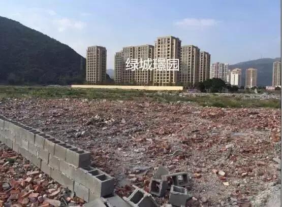 温州农村拆迁平均每户能分到千万 网友:你们缺女婿吗