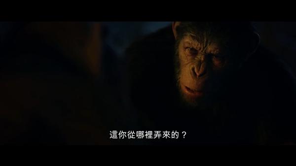 《猩球崛起3》新中字预告 又一只会说话的猩猩登场