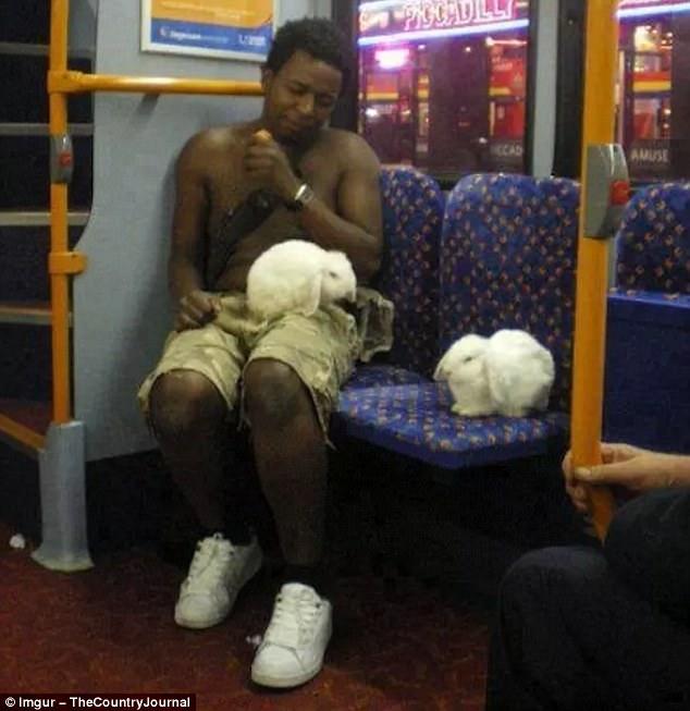 地铁里面总有奇怪的人出没图片