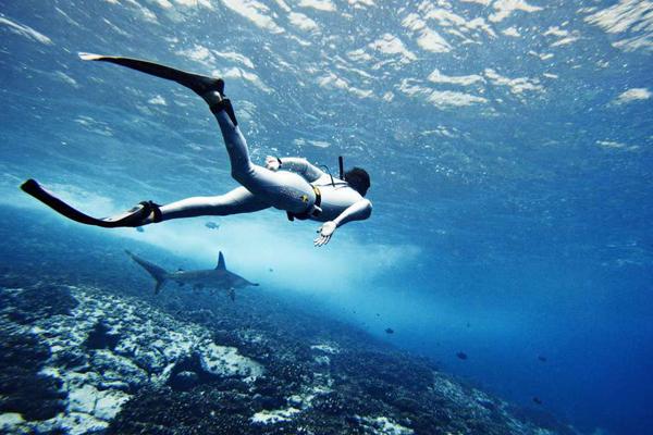 蔚蓝国度 带你领略神秘未知的海洋魅丽